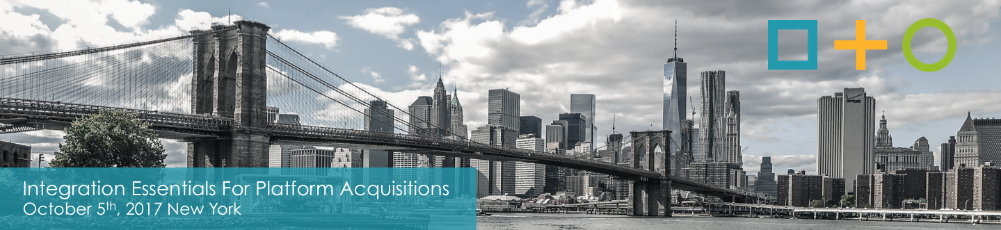 Integration Essentials For Platform Acquisitions 1